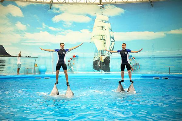 Dolphins Bay Phuket (3)
