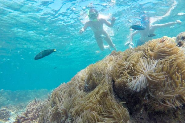 Snorkeling Point
